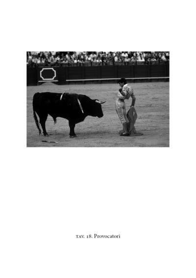 Torero provoca un toro nell'arena