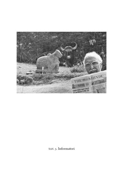 Uomo anziano legge il giornale a un toro