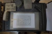 calcografie-erbario-studio-guerri