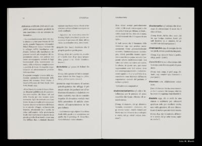 Pagine 14-15 del libro Il Calidrino
