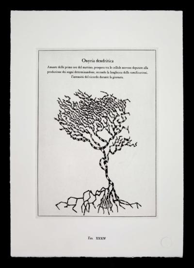 Onyria-dendritica-pianta-immaginaria